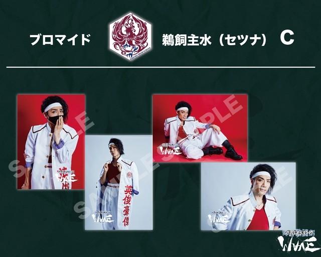 ブロマイドtypeC 鵜飼主水(セツナ)/舞台「 青春歌闘劇バトリズムステージWAVE」