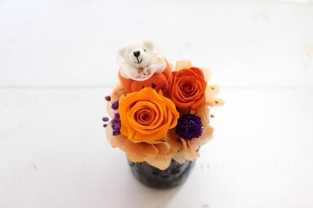 コピー:茶くまかぼちゃのブラックハロウィン