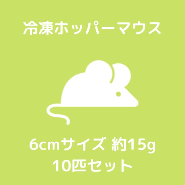 【冷凍マウス】ホッパーマウス 6cm 約15g 10匹
