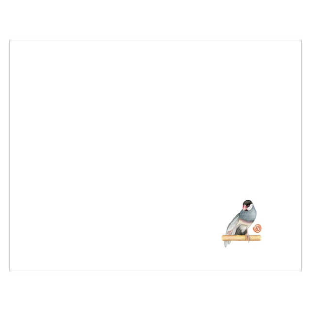 NORISANの小鳥マスク(桜文鳥/スサー)