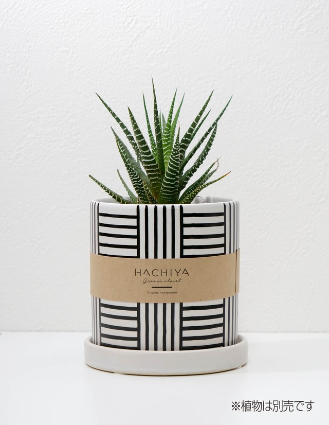 <陶器鉢>Full-Lines Mサイズ