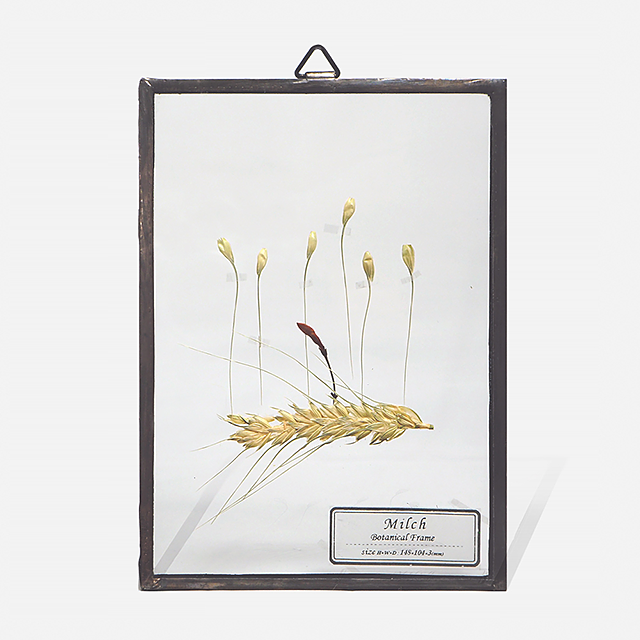 Botanical Frame S006(A_Black)