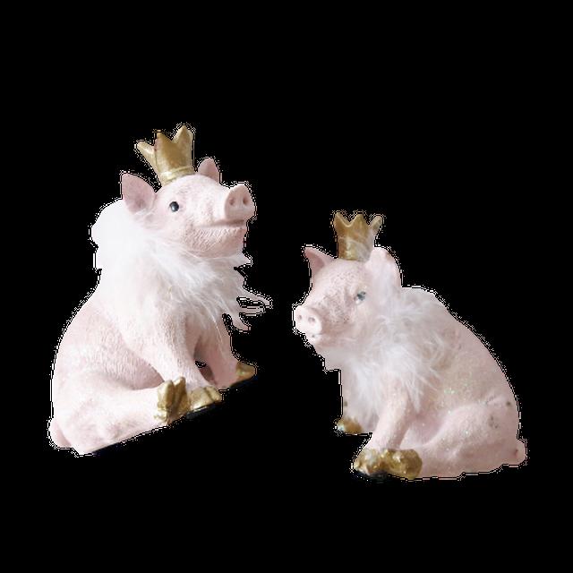 Crown pig  / クラウン ピッグ