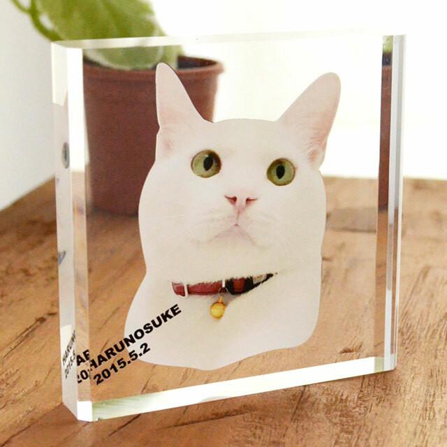 写真からつくる!フォトフレーム 猫・犬 アクリル印刷