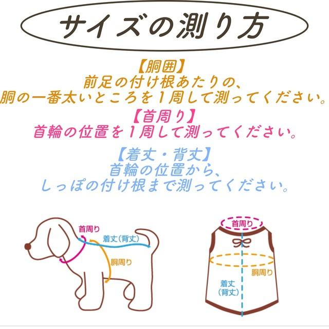 VEVARASANA®︎ ドッグウェア 迷彩