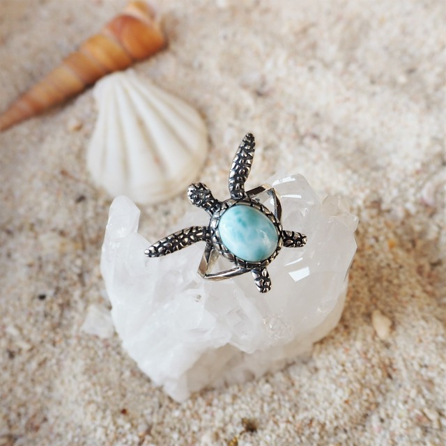 Larimar Turtle Ring #1 【14号】