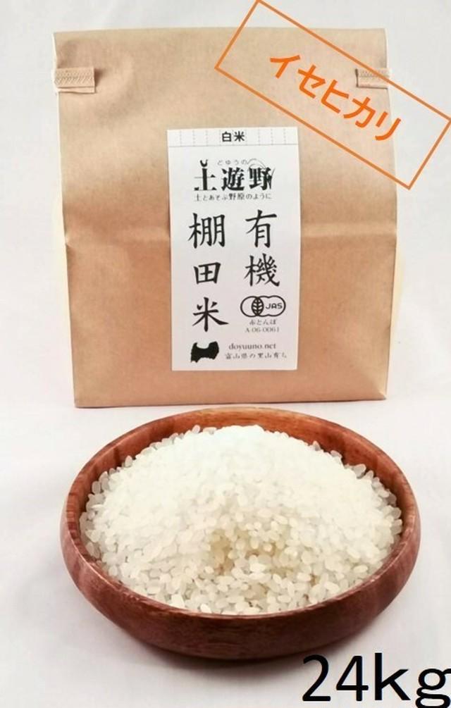 《令和元年産・新米》有機棚田米イセヒカリ 白米 9㎏