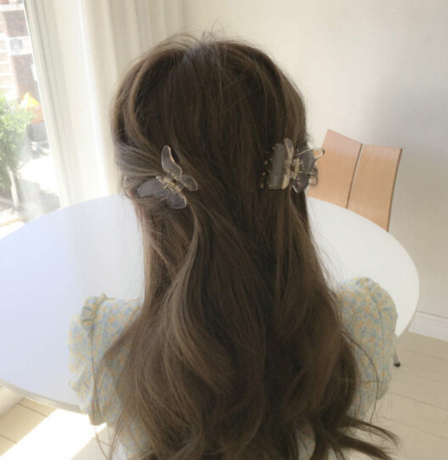butterfly clip(5 colors)