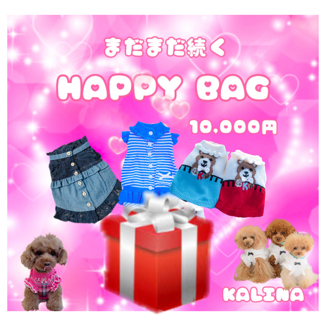 HAPPY  BAG 10000円
