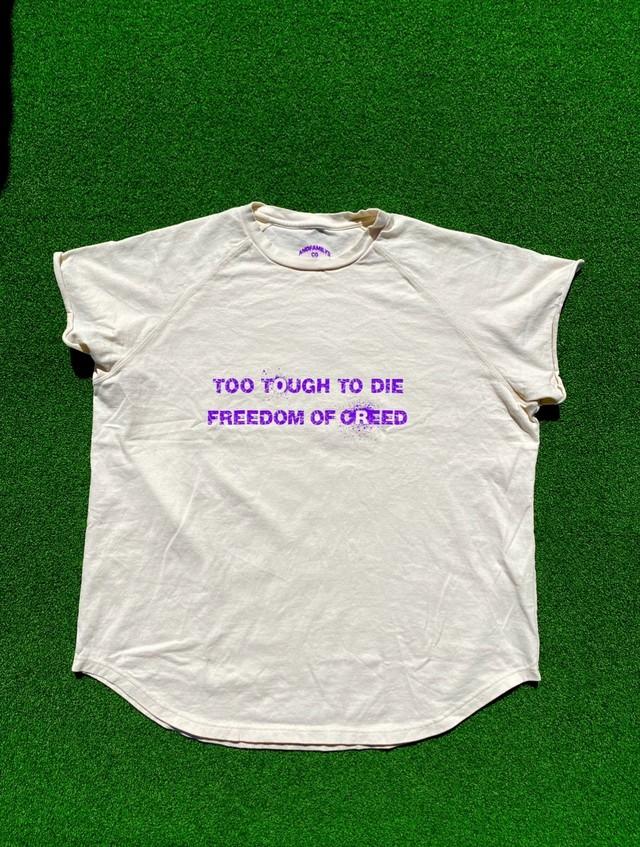 Cutoff Raglan T-Shirts (BN/PL/GR)