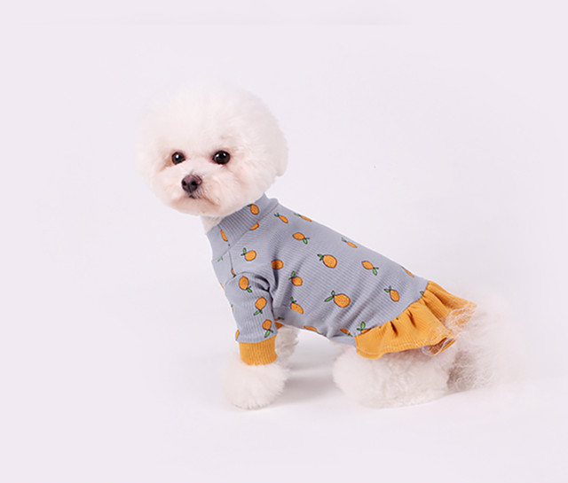 Lemon Onepiece S ~ XL 2color  /  犬服 秋冬 新作 可愛い 犬の服 ドレス お揃い ドッグウェア 小型犬 中型犬 猫