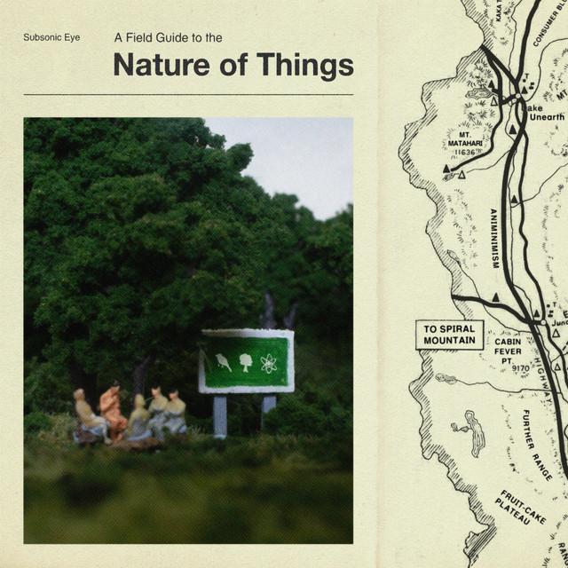 Subsonic Eye / Nature of Things(300 Ltd LP)