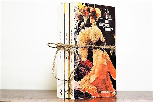 une dangereuse rencontre -3set- /display book