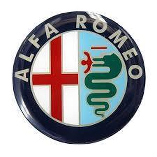 ALFA ROMEO 専用 Car Key Case Shrink Leather Case