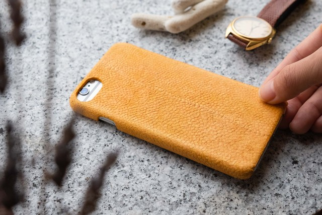 iPhone Case [buri]
