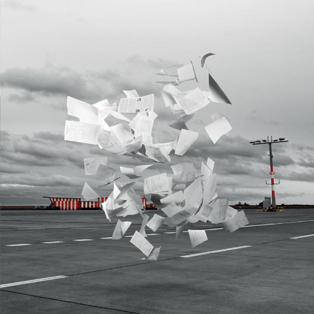 WHITE ASH - Crowds 7インチアナログ盤