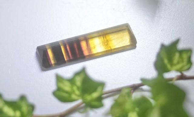 フローライト(CASA BLESSING®)fluo-0015