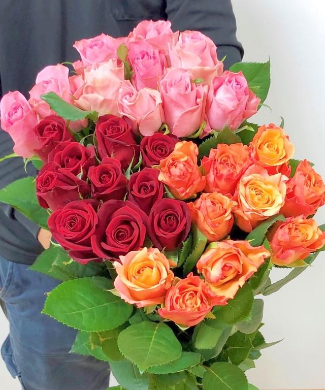 ★送料無料(クール便)厳選バラ!30本!Fujiwara3色ミックス(赤・ピンク・オレンジ) 【ロスフラワー救済!】