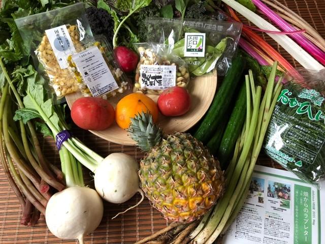 【販売スタート】ベジバルーンセット(6月)『芒種の候 梅雨を乗りきれ元気いっぱい野菜たち』※写真は5月に出荷したベジバルーンです。