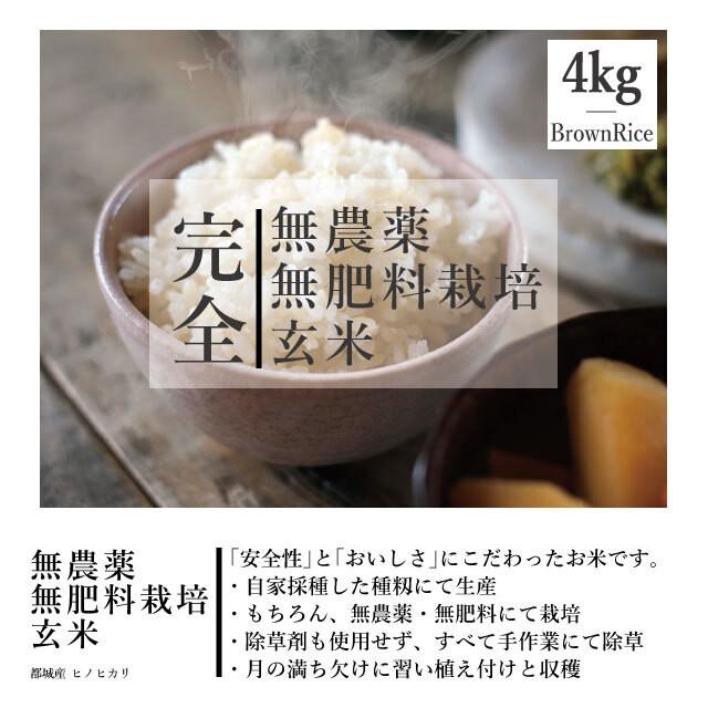 【送料別】4kg 令和元年度産 <新米> 完全無農薬・無肥料栽培 玄米 都城産ヒノヒカリ