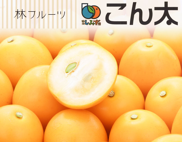完熟きんかん こん太〔送料無料、こん太、完熟きんかん、きんかん、柑橘、詰め合わせ、贈答用〕