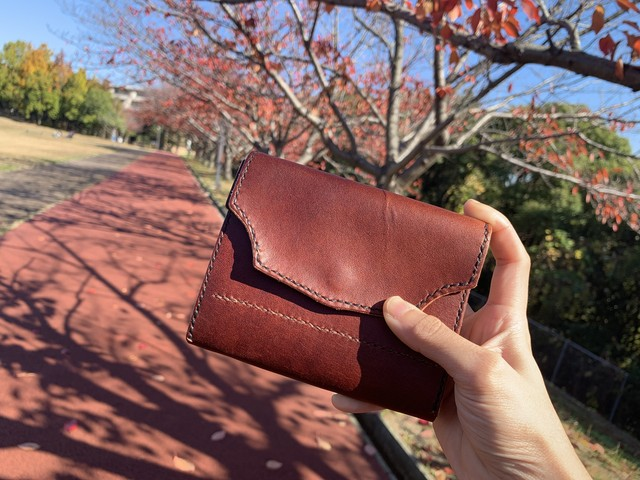 medium pastropmarron Wallet