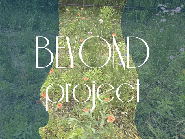 BEYOND project  3,490