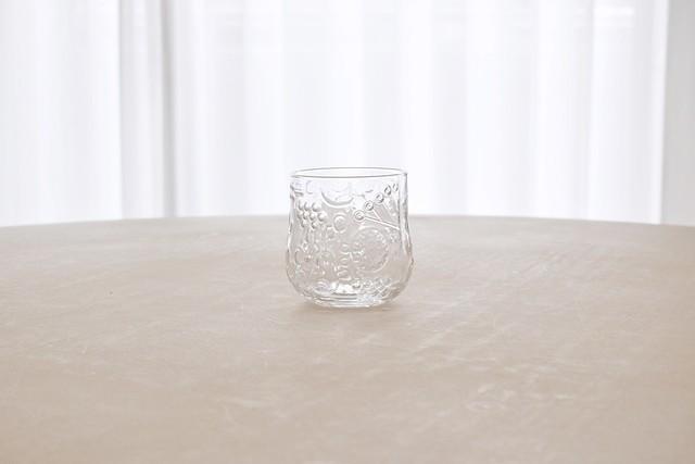 Nuutajarvi Frutta glass tumbler(Oiva Toikka)