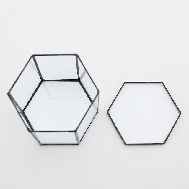 Hexagonal TerrariumL(A_black)