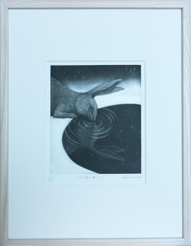 林 明日美 / 「うさぎの夢の蝶つがい」/ 銅版画・メゾチント / 額装込み