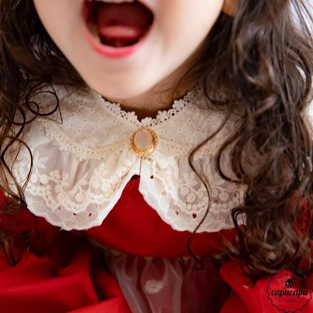 «予約» bijou Lace cape 2colors ビジューケープ 付け襟 つけ襟