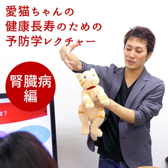 愛猫ちゃんの健康長寿のための予防学レクチャー【腎臓病編】(東京開催:11月24日SUN)/ネコデミー