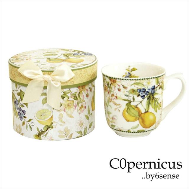 Gift Box付き マグカップ Lemon C0pernicus