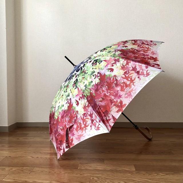 【残1本即納可】紅葉の雨傘 - Umbrella of autumn leaves