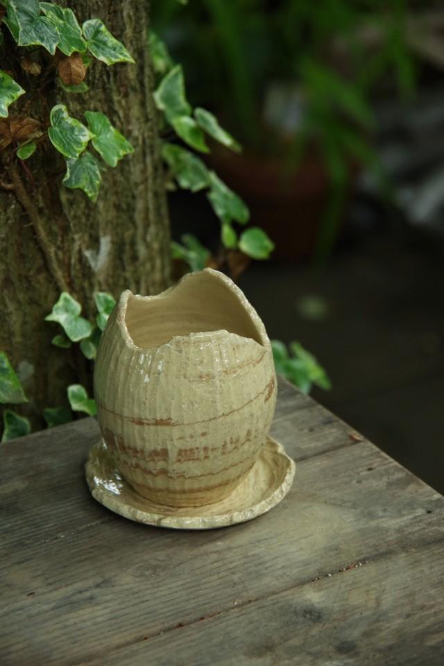COCO植木鉢①【佐野 有子】