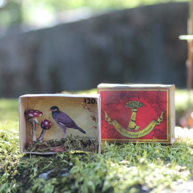 キノコのミニチュア標本_ベニテングタケと5つのキノコ【森の褥】