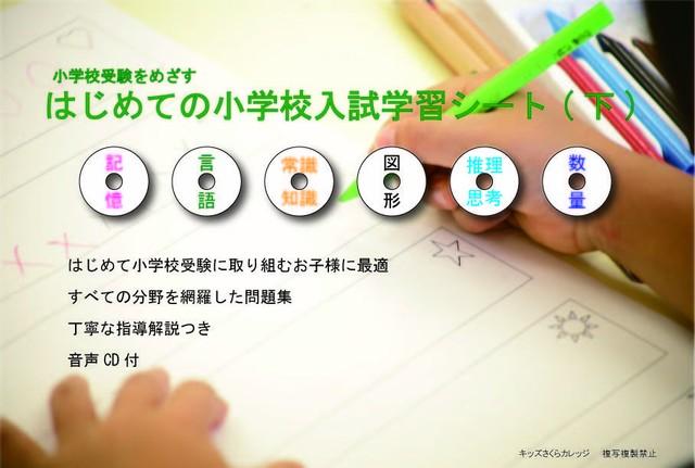 はじめての小学校入試学習シート(下巻)