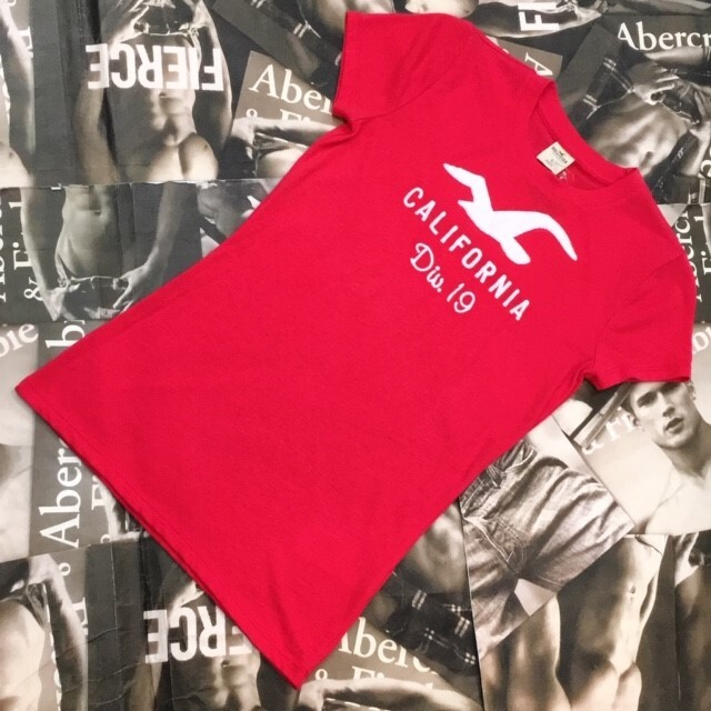 HOLLISTER WOMEN Tシャツ Sサイズ
