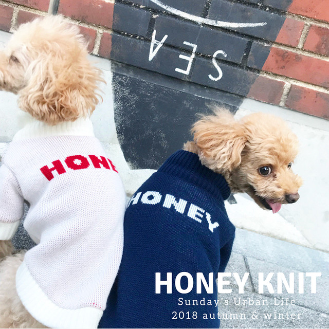 HONEY KNIT♡【white & navy】
