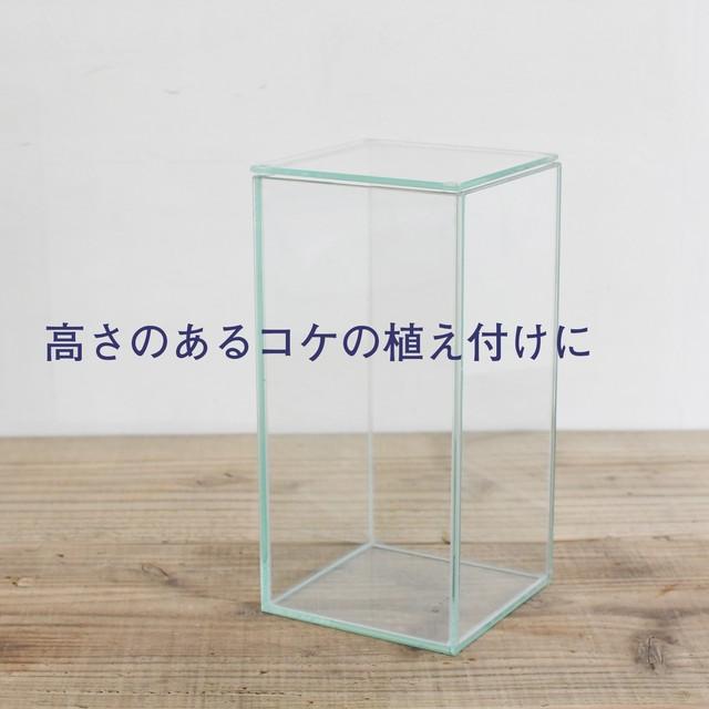 【ガラス容器】フィット100x100High(100x100xh200mm)◆高さのあるコケの植え付けに