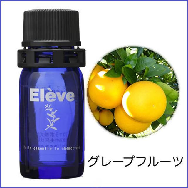 オレンジ ビター 5ml / Eleve