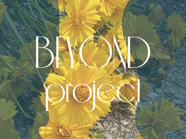 BEYOND project  4,490