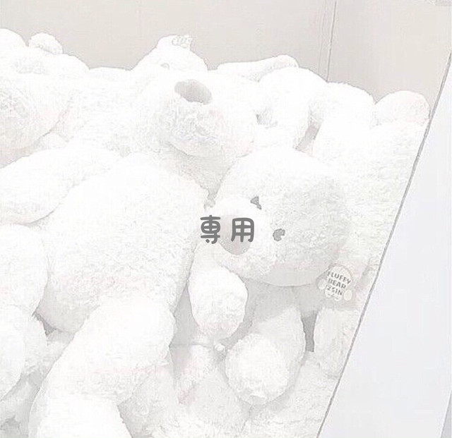 【アストリ様 専用出品】