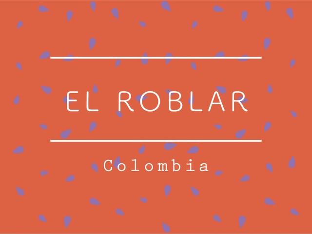 【100g】コロンビア / EL ROBLAR