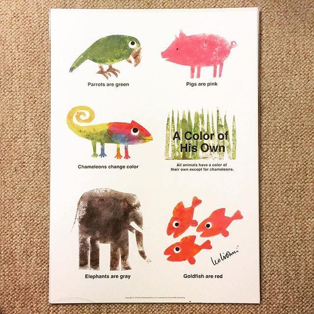 ミニ ポスター「レオ・レオニ じぶんだけのいろ 動物」 - メイン画像