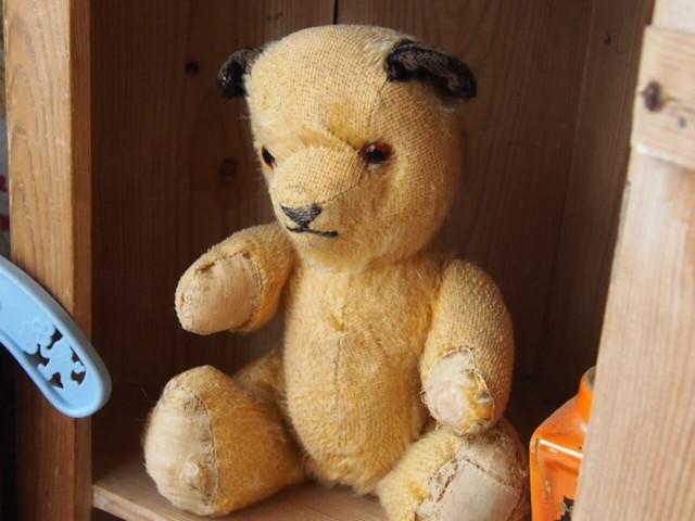 Sooty Bear