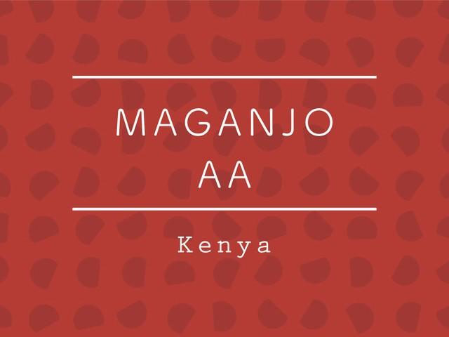【100g】ケニア / MAGANJO AA