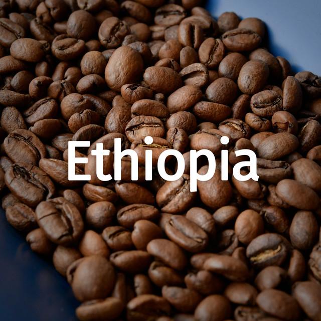 エチオピア シダモ 200g