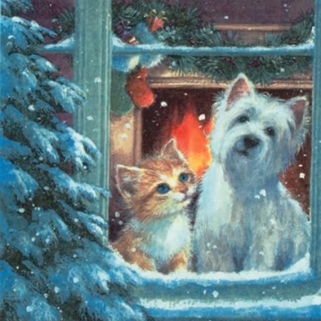 【ti-flair】バラ売り2枚 ランチサイズ ペーパーナプキン Westie & Kittin looking out of Window マルチカラー