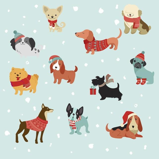 【Paper+Design】バラ売り2枚 ランチサイズ ペーパーナプキン Merry Dogs ライトブルー